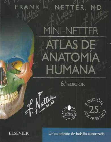 Anatomía y Neuroanatomía